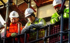 Occupational Health and Safety Survey Results